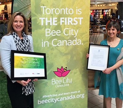 Toronto is the 1st Bee City in Canada