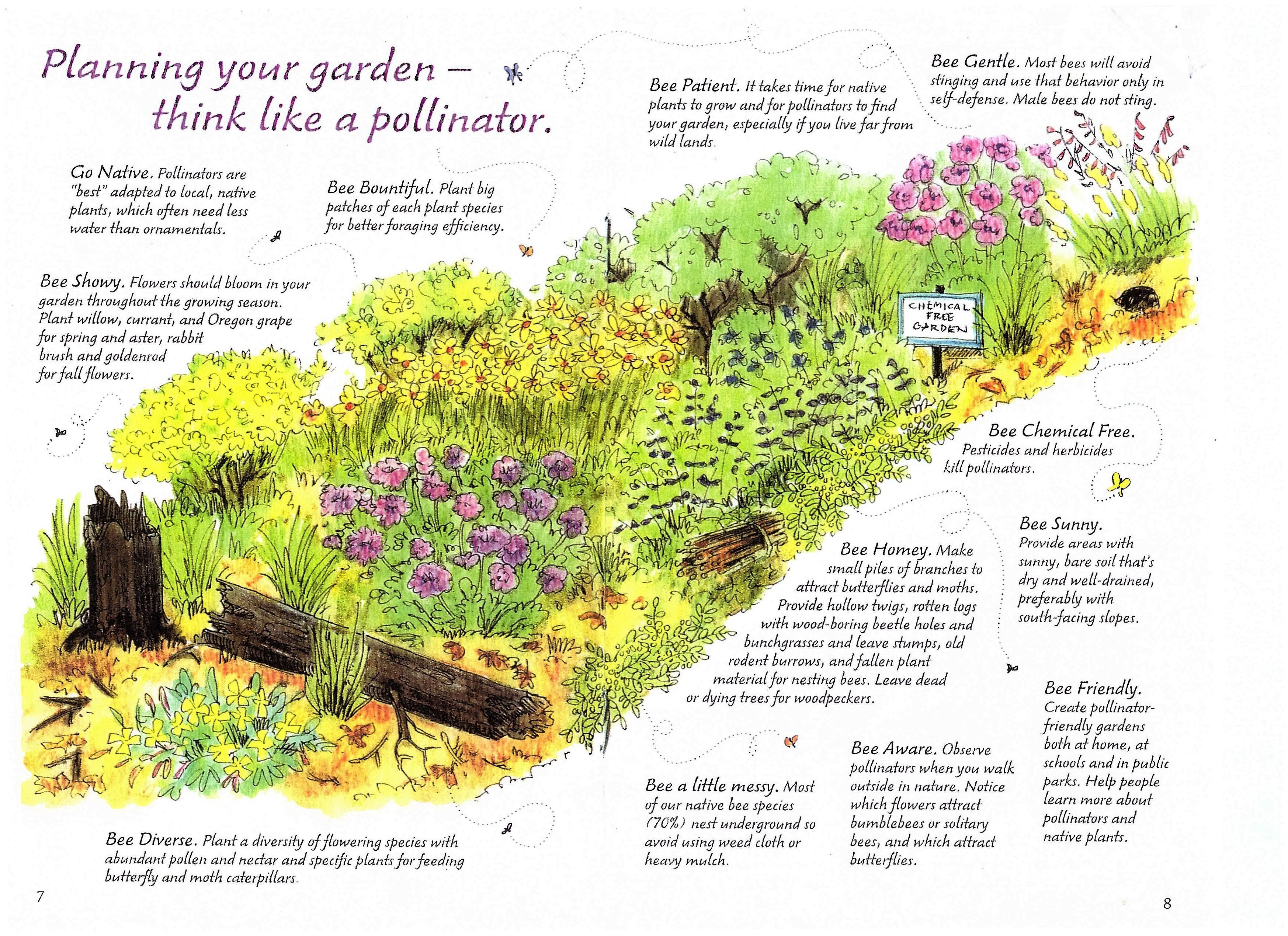 Planning your pollinator garden
