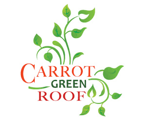 Carrot Green Roof