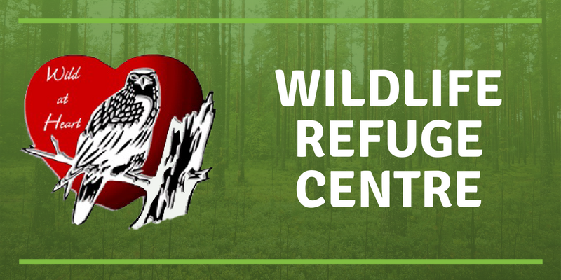 Wild at Heart Wildlife Refuge Centre
