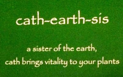 cath-earth-sis