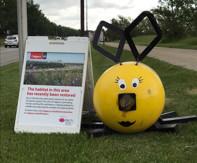 Calgary Bee Buoy