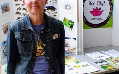 Pollinator Champion Feature: Susan Blayney