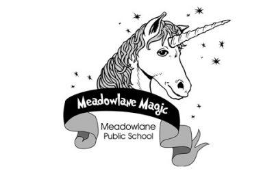 Meadowlane Public School