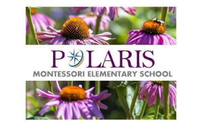 Polaris Montessori Elementary School