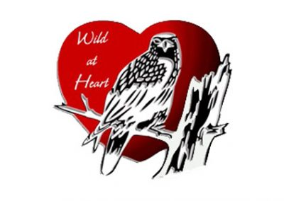 Wild at Heart Wildlife Refuge Centre