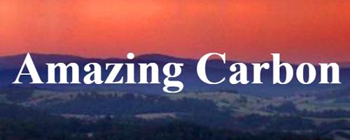 Amazing Carbon