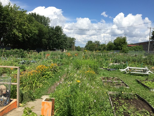 Jardin communautaire de LaSalle