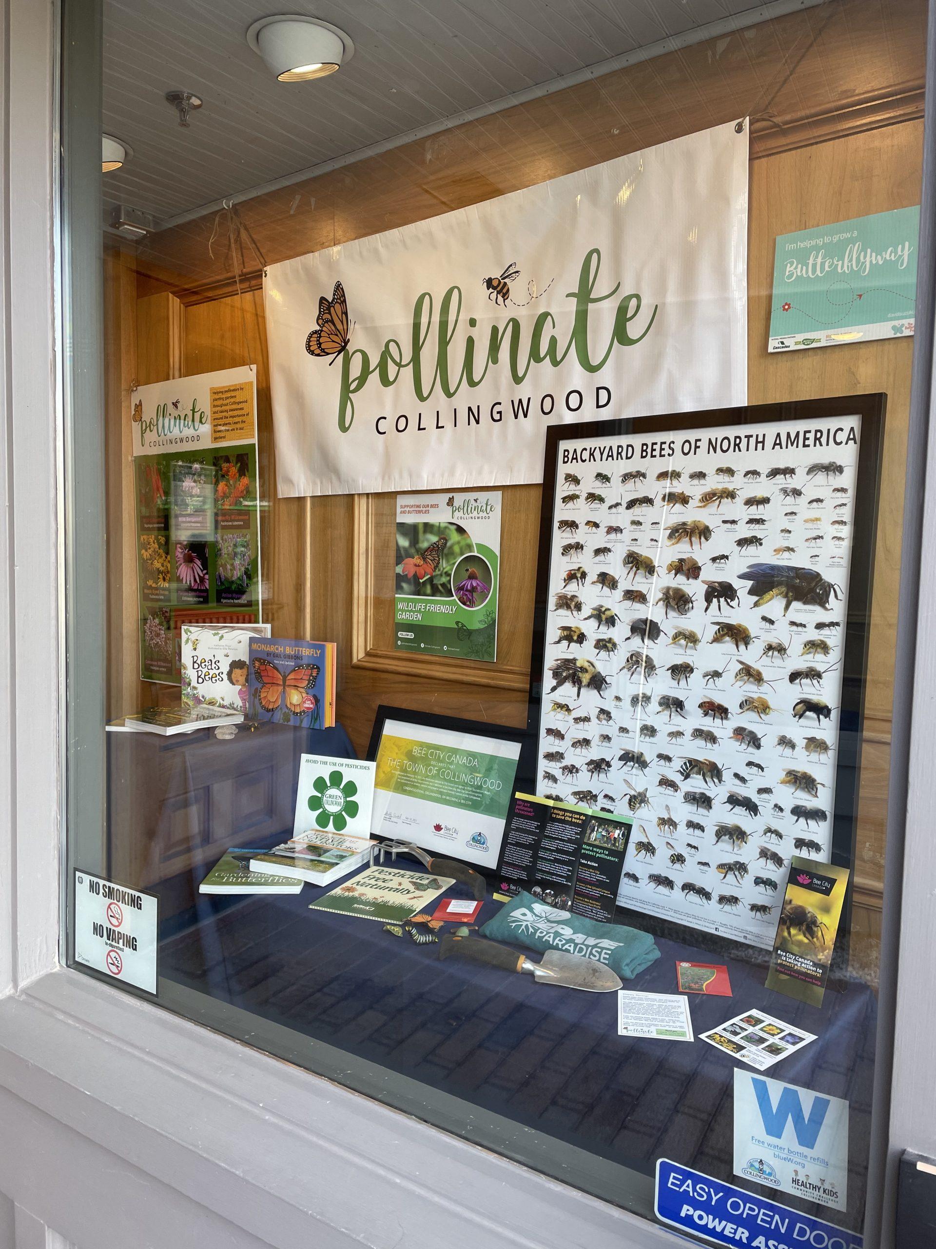 Pollinate Collingwood Town Hall Display