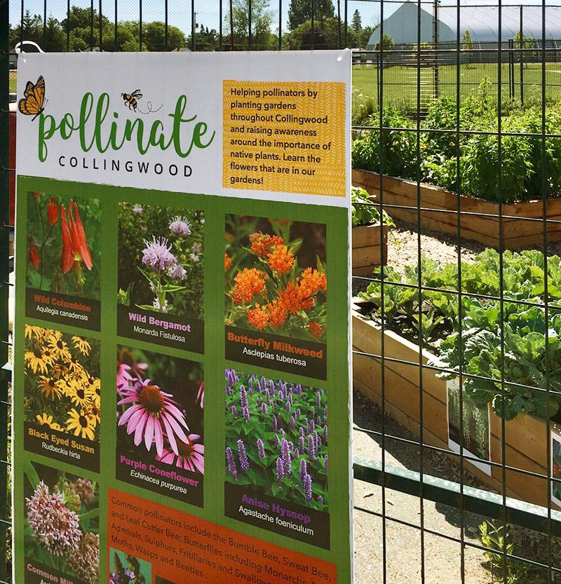 Pollinate Collingwood Garden Sign